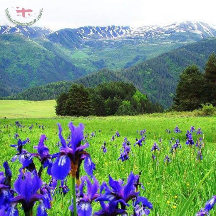Tours in Tusheti